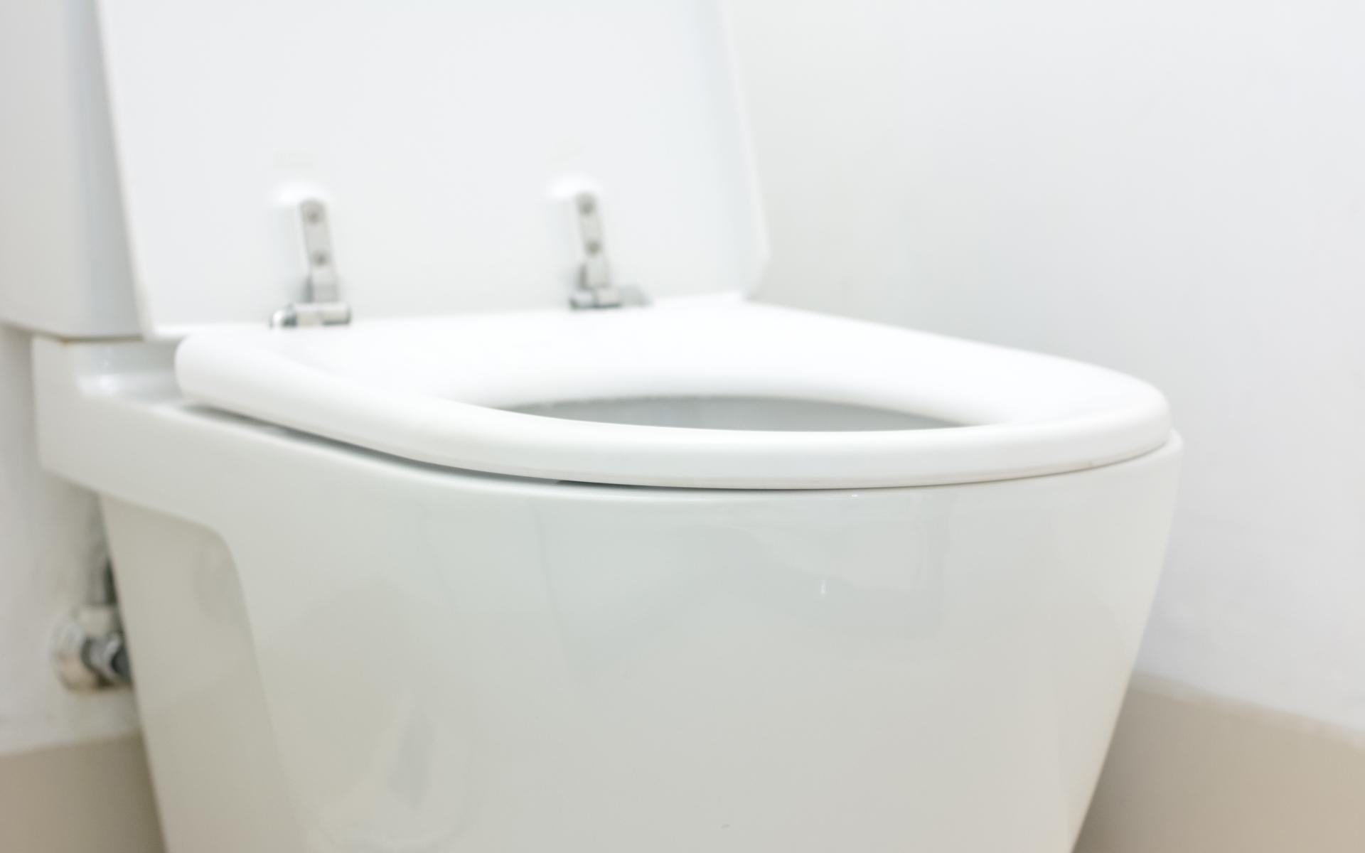 Lombard Toilet Repair